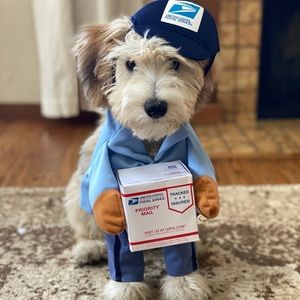 USPS dog costume